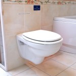 Choix des sanitaires WC