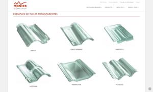 Exemples des tuiles transparentes MONIER